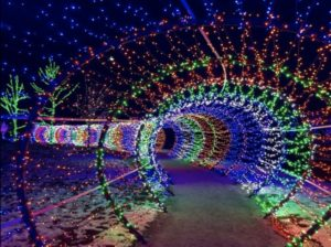 Scentsy Commons Christmas Tunnel of Lights